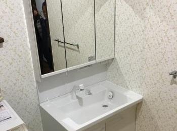 お湯と水をきちんと使い分けられる「エコシングル水栓」もあります。