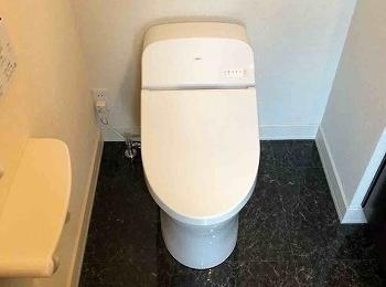 シンプルな機能とローシルエットデザインのTOTOのトイレGG。